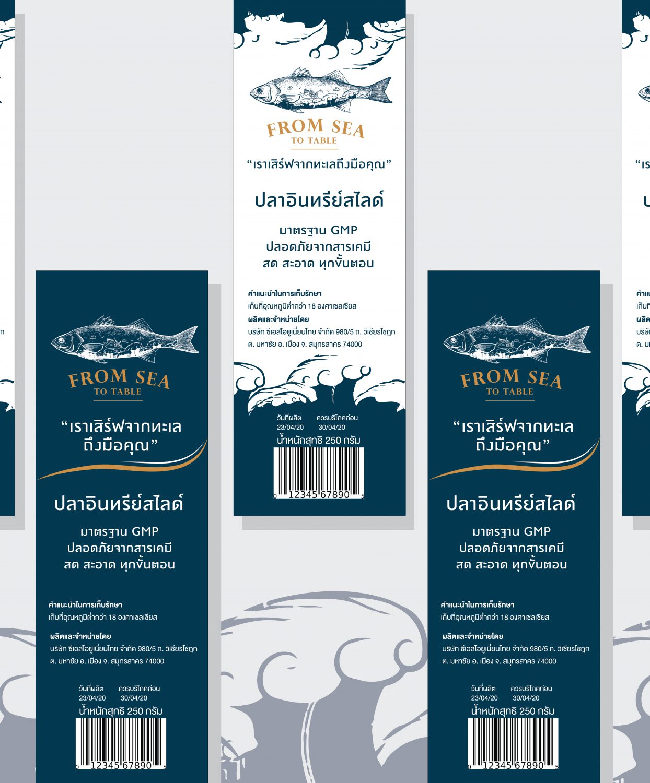 branding concept design